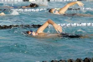 swim-meet-8-08-347